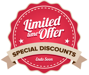 Limited Time Offer Badge for 904SEO Services